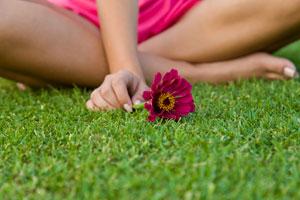 Lawn Aeration Atlanta